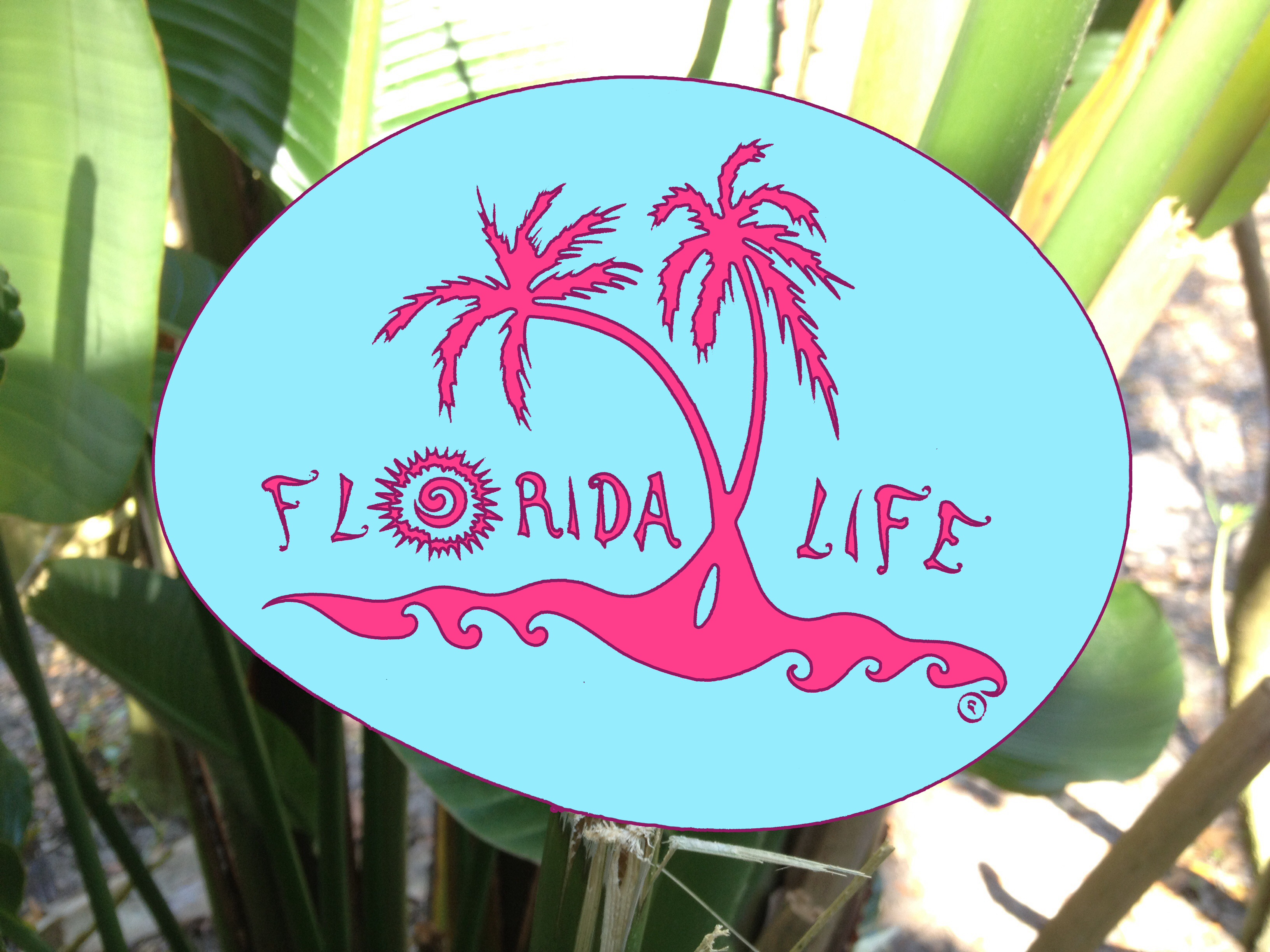 Florida Life Decal